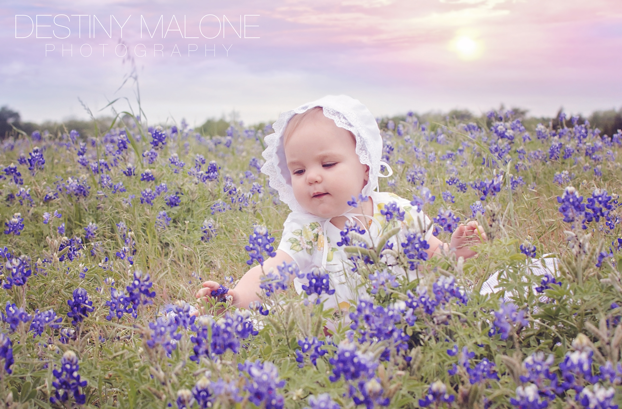 baby in the bluebonnets garland tx