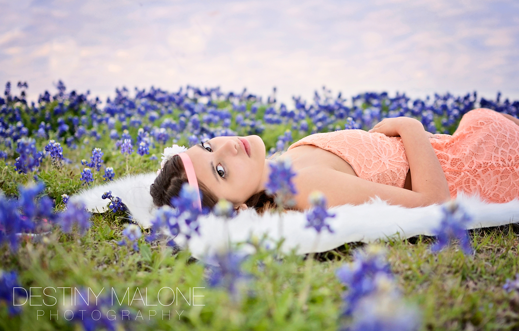 bluebonnet photographer dallas rowlett garland